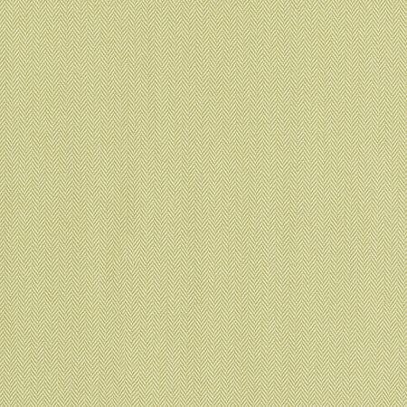 Primary Colors Pistachio Performance Fabric Sample