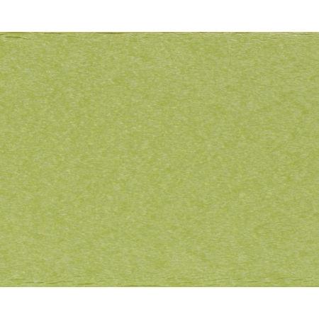Lime POLYWOOD Lumber Sample